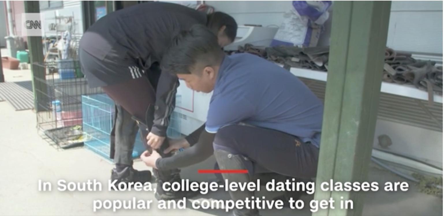 Hàn Quốc: Vấn nạn sợ yêu ở giới trẻ - Ảnh 3.