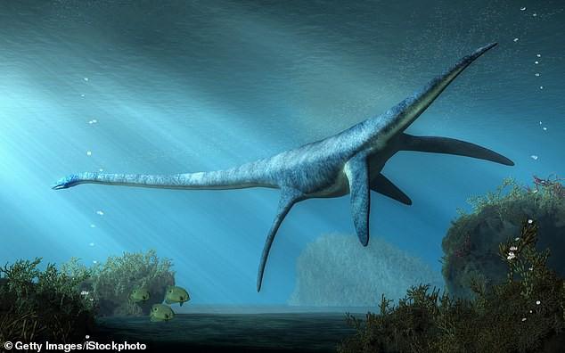 Tìm thấy hóa thạch của loài khủng long lớn nhất từ trước đến nay - ảnh 1