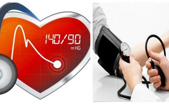Thảo dược quý nào giúp điều trị cao huyết áp? - Ảnh 1.