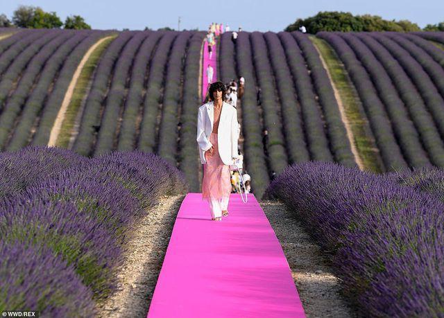 Xao xuyến trước sàn catwalk nằm giữa cánh đồng hoa oải hương - Ảnh 2.