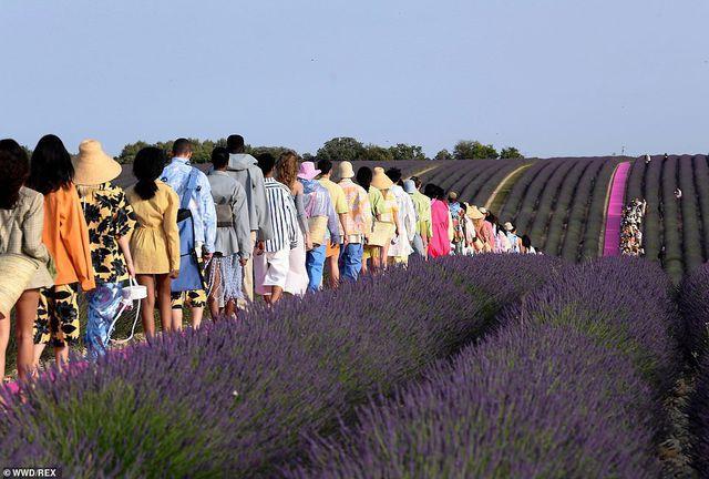 Xao xuyến trước sàn catwalk nằm giữa cánh đồng hoa oải hương - Ảnh 6.