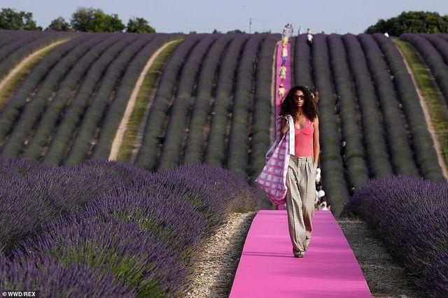 Xao xuyến trước sàn catwalk nằm giữa cánh đồng hoa oải hương - Ảnh 10.