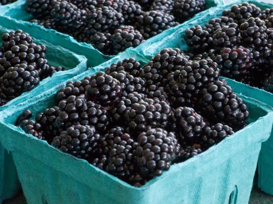 Những thực phẩm bạn có thể ăn thỏa thích mà không lo tăng cân - Ảnh 1.