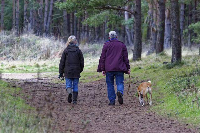 Đi bộ và chạy, hoạt động nào tốt hơn cho sức khỏe? - Ảnh 6.