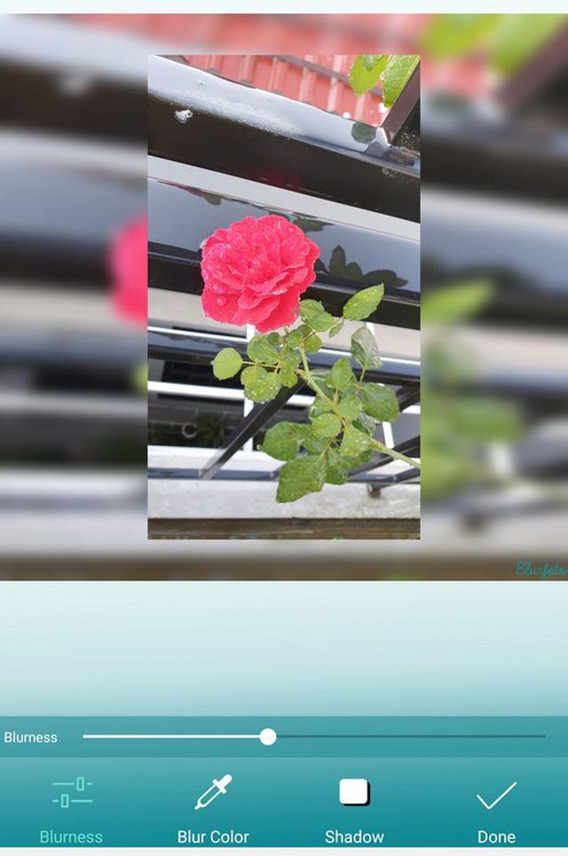 Tuyệt chiêu tạo hiệu ứng chụp ảnh xóa phông chuyên nghiệp trên smartphone - ảnh 8