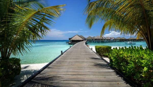 Ăn Hảo Hảo, dạo đảo Maldives cùng Hoài Linh và Tóc Tiên ngay hôm nay - Ảnh 1.