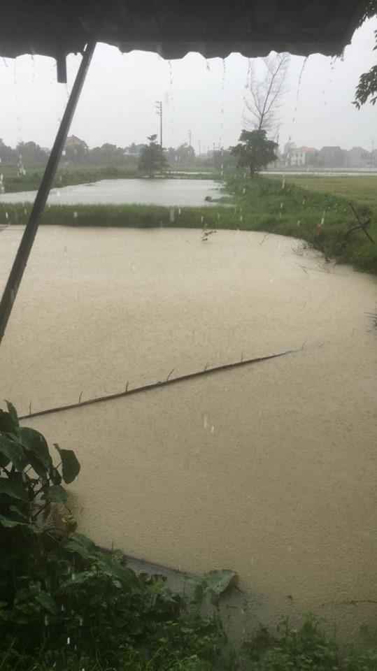 Hình ảnh ngập lụt kinh hoàng ở rốn lũ miền Trung - Ảnh 7.
