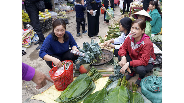 Dong leaves - an indispensable item in the countryside market on Tet holiday.