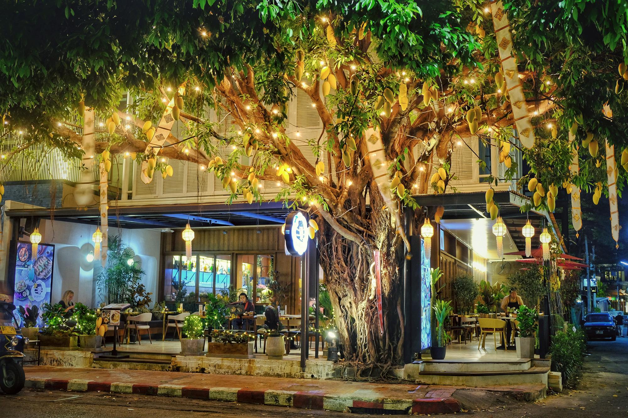 Ngoài lễ hội đèn trời, Chiang Mai còn có gì hấp dẫn du khách? - Ảnh 14.