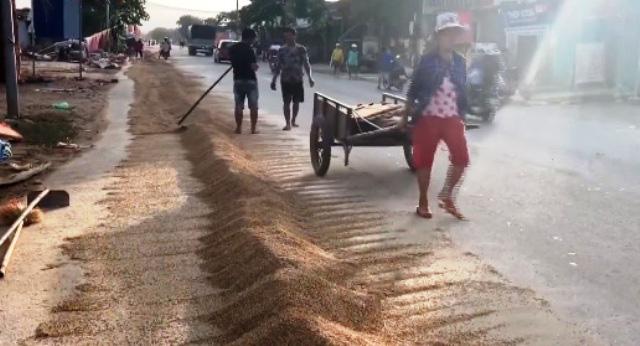 Nỗi buồn của người dân tại vựa lúa miền Trung sau lũ - Ảnh 2.