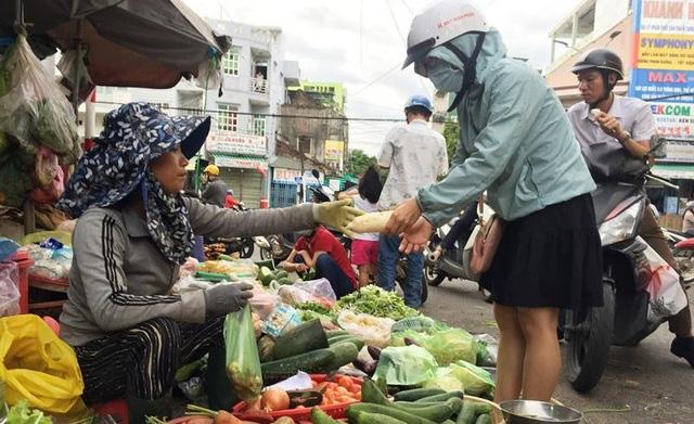"""""""Bão giá"""" rau xanh tại Quảng Ngãi - Ảnh 2."""