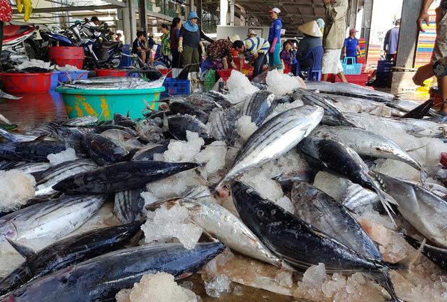 Cá ngừ Việt tạo nên lịch sử hiếm có tại Italy  - Ảnh 1.