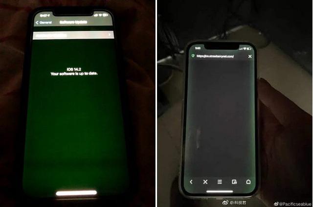 Apple đã biết lỗi màn hình iPhone 12 nhưng khuyên nhân viên đừng vội sửa - Ảnh 1.