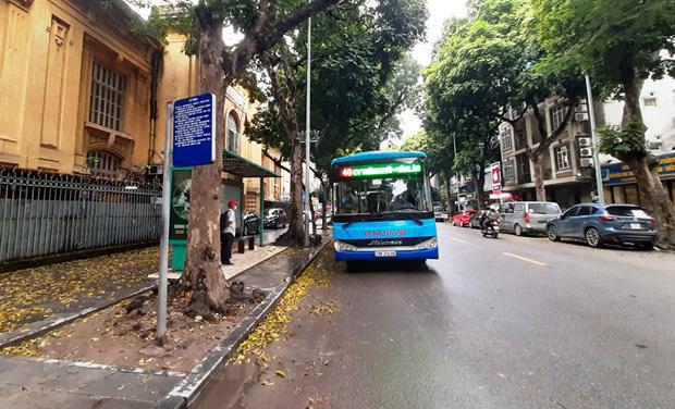 Chậm thanh toán trợ giá, xe bus Hà Nội có nguy cơ phải tạm dừng chạy - Ảnh 1.