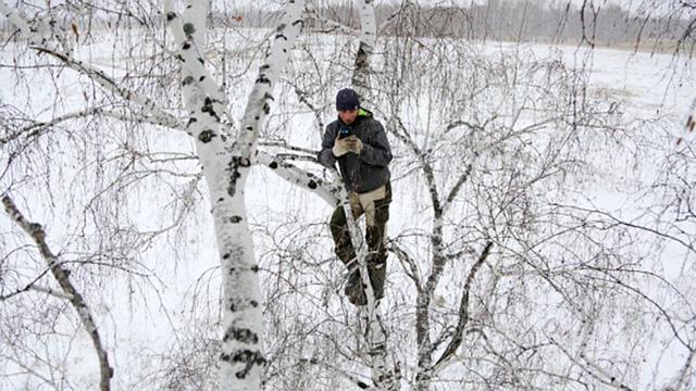 Chàng trai trèo cây cao 8m tìm bắt sóng di động để học trực tuyến - Ảnh 1.