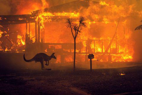 2020 - năm của những điều lẽ ra đối với khí hậu thế giới - Ảnh 5.