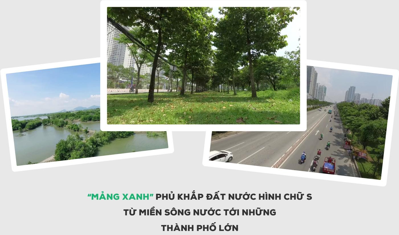 """""""Triệu cây vươn cao cho Việt Nam xanh"""" - Dấu ấn 9 năm tô màu xanh đất nước - Ảnh 11."""