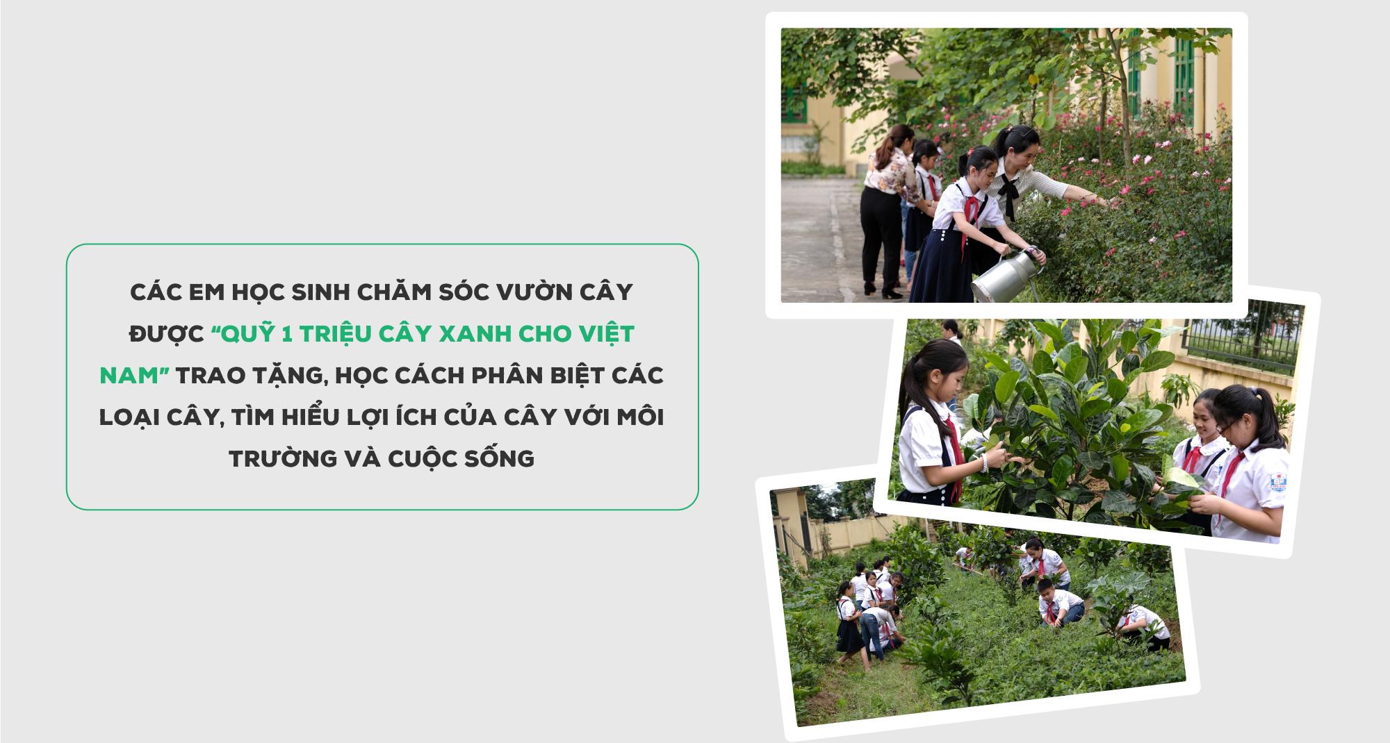 """""""Triệu cây vươn cao cho Việt Nam xanh"""" - Dấu ấn 9 năm tô màu xanh đất nước - Ảnh 12."""