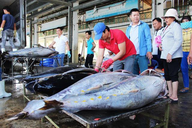 Trao cơ hội từ Hiệp định EVFTA đến ngư dân - Ảnh 1.