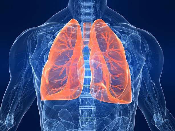 10 triệu chứng của bệnh lupus ban đỏ  - Ảnh 7.
