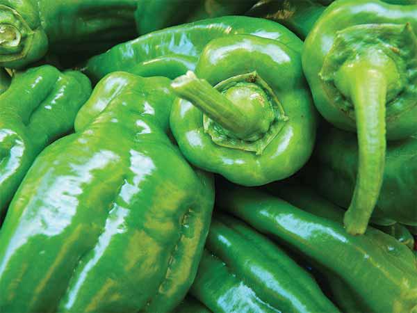 Đánh bay mỡ bụng nhanh chóng với các thực phẩm xanh - Ảnh 1.