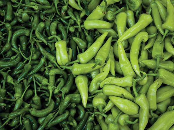 Đánh bay mỡ bụng nhanh chóng với các thực phẩm xanh - Ảnh 3.