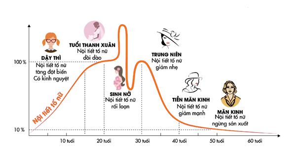Liệu pháp tăng cường và cân bằng estrogen cho phái đẹp - Ảnh 1.