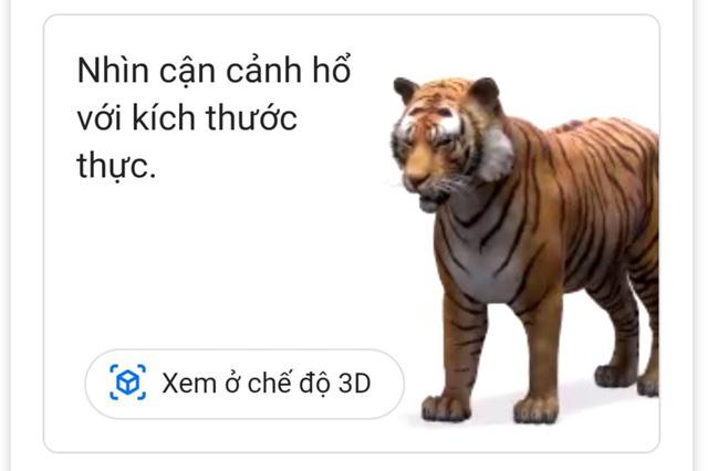 Thăm vườn bách thú 3D trong mùa dịch COVID-19 chỉ với Google Search - ảnh 2