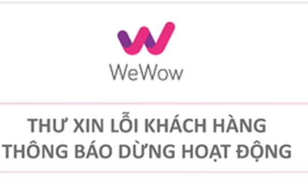 WeFit tuyên bố phá sản - Ảnh 1.