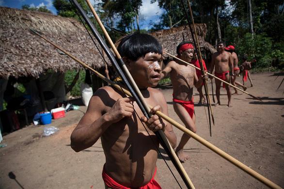 Rừng Amazon có thể là ổ dịch lây lan virus tiếp theo - Ảnh 1.