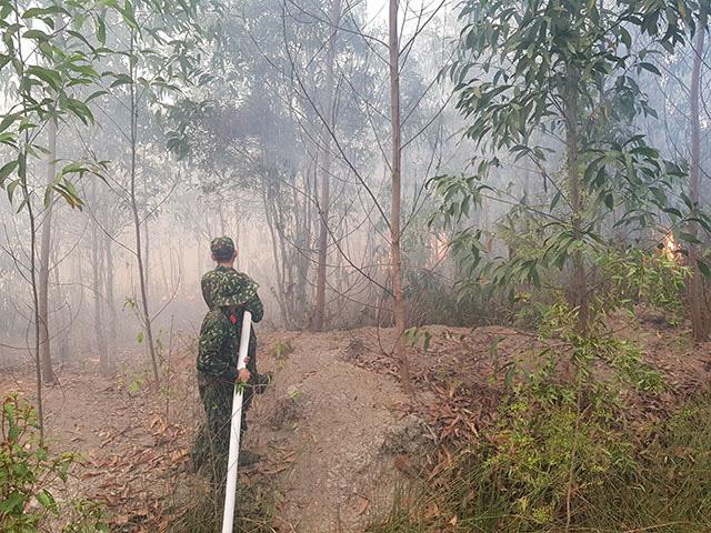 Huy động 400 người tham gia chữa cháy rừng ở Hòn Đất, Kiên Giang - Ảnh 1.