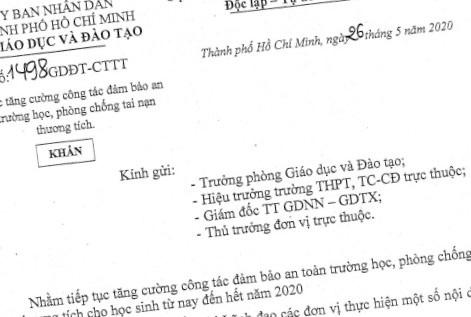 Vụ cây phượng đổ làm chết học sinh: Sở GD&ĐT TP.HCM ra công văn khẩn - Ảnh 1.