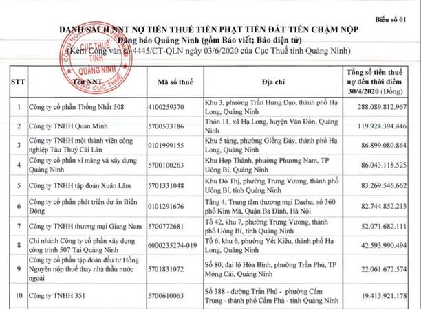 Quảng Ninh công khai gần 400 doanh nghiệp chây ì nợ thuế - Ảnh 1.
