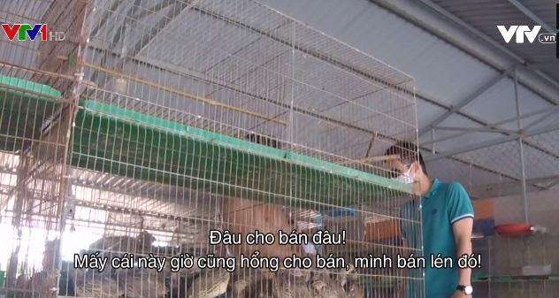 Bất chấp lệnh cấm, buôn bán động vật hoang dã vẫn tấp nập - Ảnh 2.