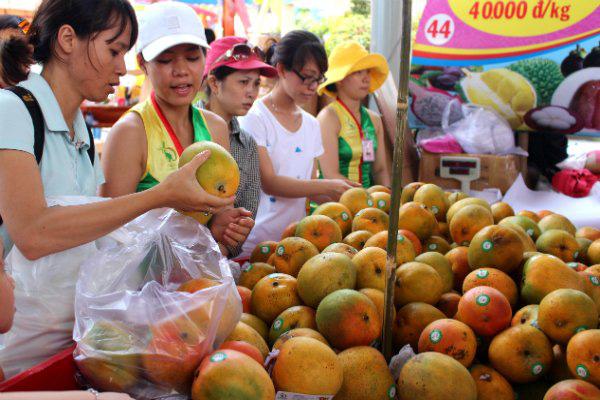 """Rau quả Việt """"tính kế"""" đa dạng hóa thị trường từ EVFTA - Ảnh 1."""