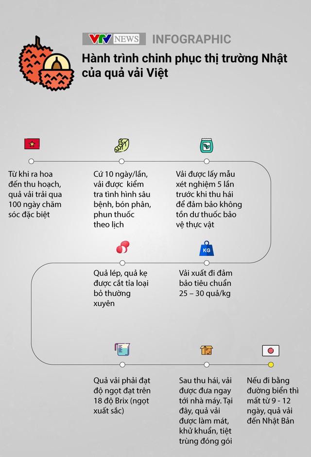 Nâng tầm giá trị trái vải Việt Nam trên thị trường quốc tế - Ảnh 2.