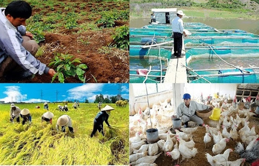 Kinh tế Việt Nam 6 tháng đầu năm: Nông nghiệp là trụ đỡ, thị trường nội địa là điểm tựa - ảnh 2