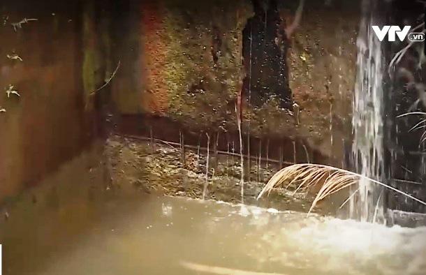 Nhiều hồ đập ở Tây Nguyên đang kêu cứu - Ảnh 2.