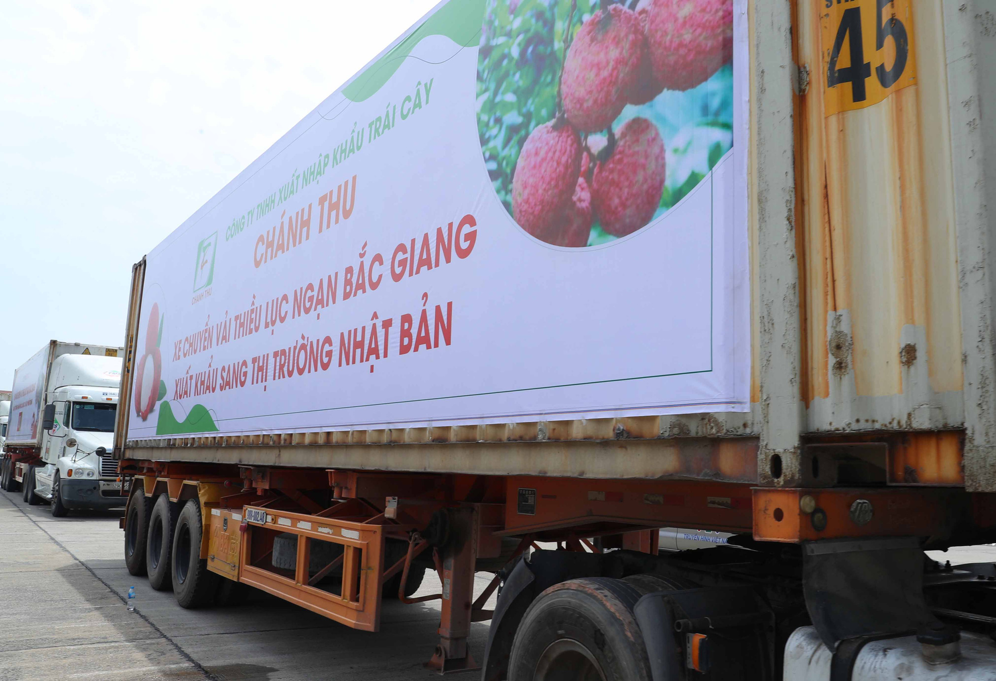 The trucks carrying lychee to harvested lychee for consumption in both domestic and foreign markets.