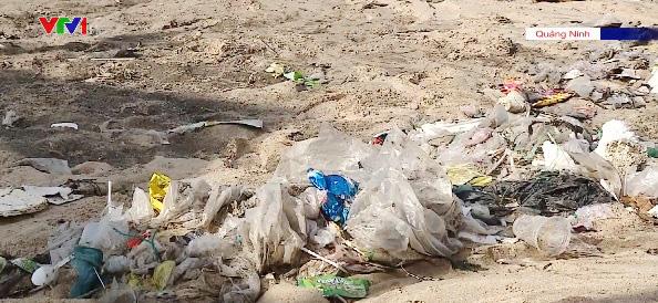 Công bố 2 dự án xử lý rác thải nhựa ven biển - Ảnh 1.