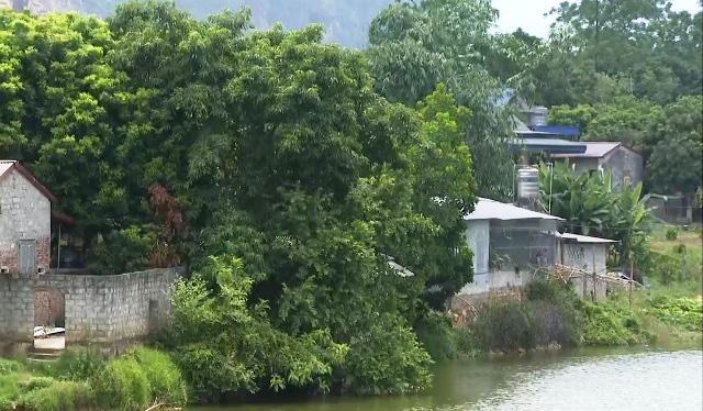 Hơn 200 hộ dân bất an khi sống cạnh hồ thủy lợi xuống cấp nguy hiểm - Ảnh 1.