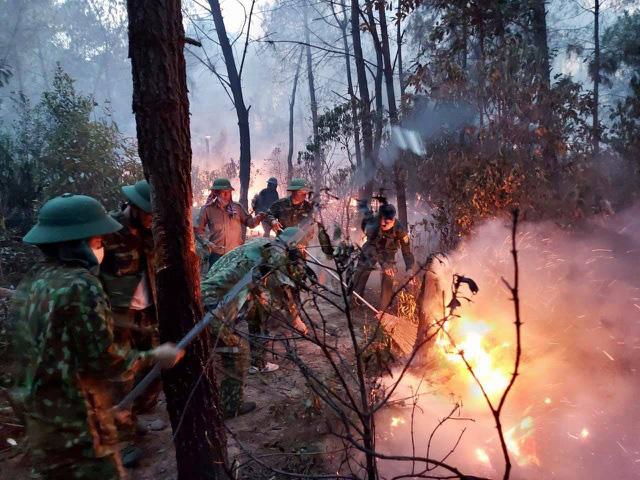 Cháy rừng liên tục ở Nghệ An: Vấn đề từ ý thức đến phòng cháy  - Ảnh 1.