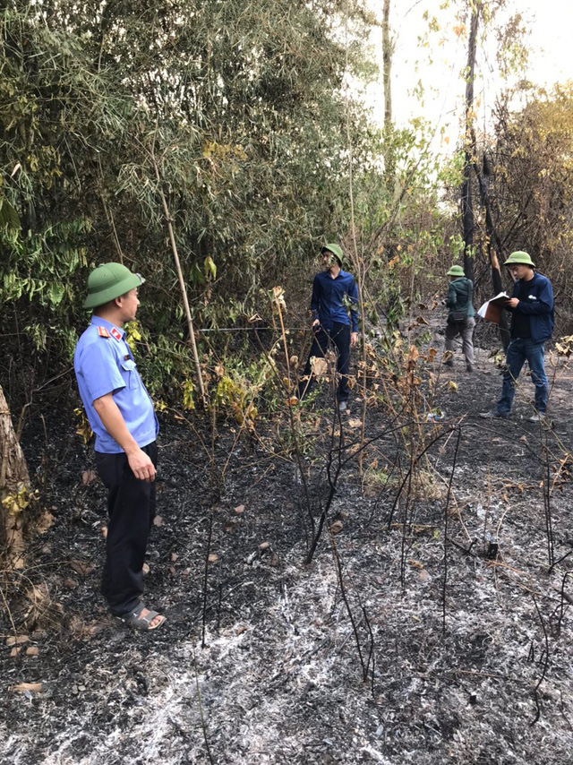 Triệu tập một phụ nữ nghi đốt rác gây cháy rừng - Ảnh 1.
