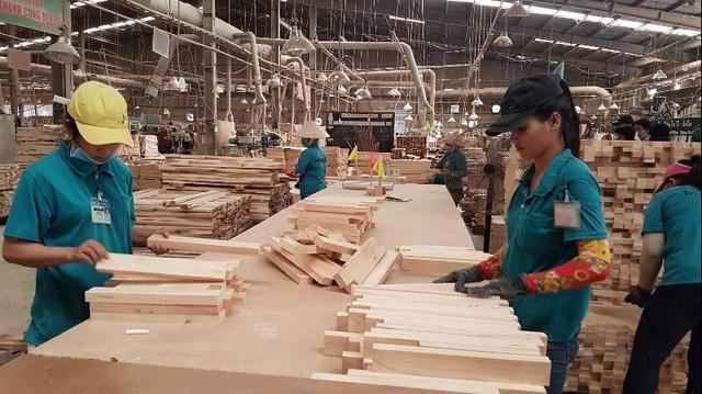 Nhiều doanh nghiệp gỗ khôi phục được 50-60% hoạt động sản xuất kinh doanh - Ảnh 1.