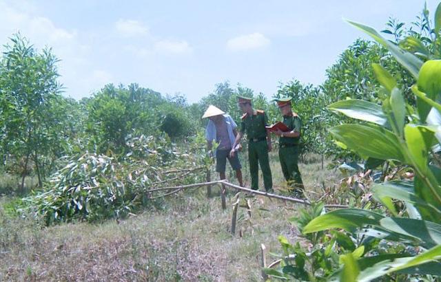 3 đối tượng vác dao chặt phá hơn 700 cây keo của hàng xóm để cảnh cáo - Ảnh 1.