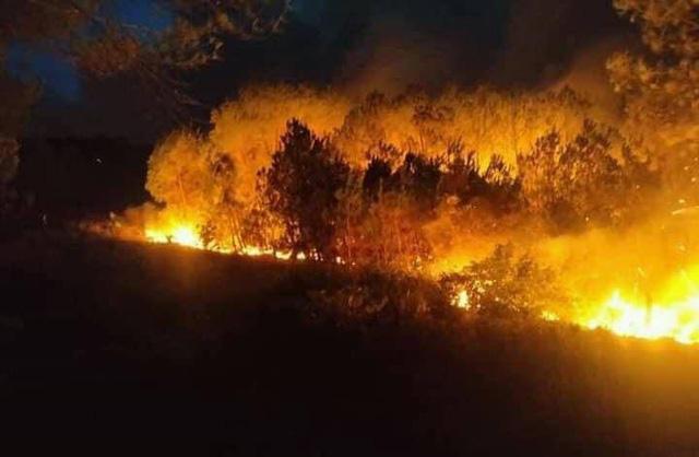 Cháy rừng xảy ra liên tiếp ở Quảng Trị: Do mâu thuẫn cá nhân? - Ảnh 1.