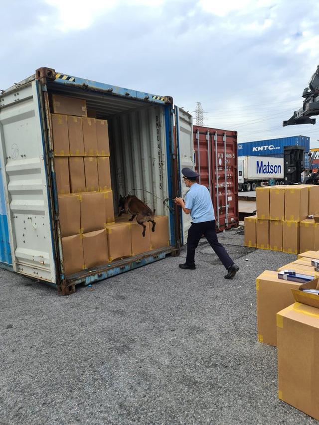 Sẽ tiêu hủy hơn 1 triệu bao thuốc lá giả nhãn hiệu 555 nhập khẩu qua cảng Hải Phòng - Ảnh 1.