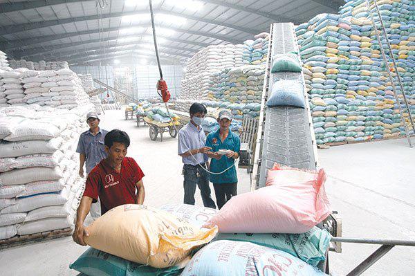 Chưa khi nào gạo Việt vui như lúc này - Ảnh 3.