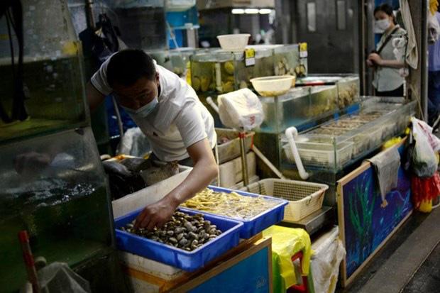 Trung Quốc cấm nhập khẩu thủy sản của một công ty Indonesia - ảnh 1