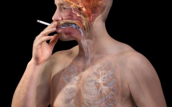 Giải pháp thanh lọc lá phổi bị nhiễm độc do khói thuốc lá - Ảnh 2.